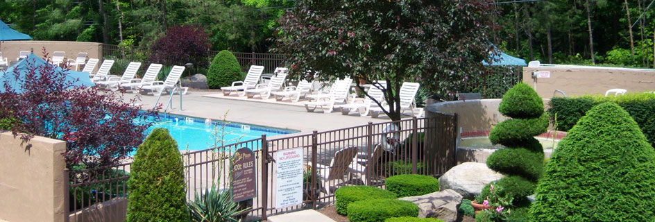 View of the Tall Pines Motel Pool Area